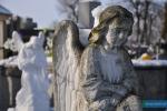 cmentarz20150201-023