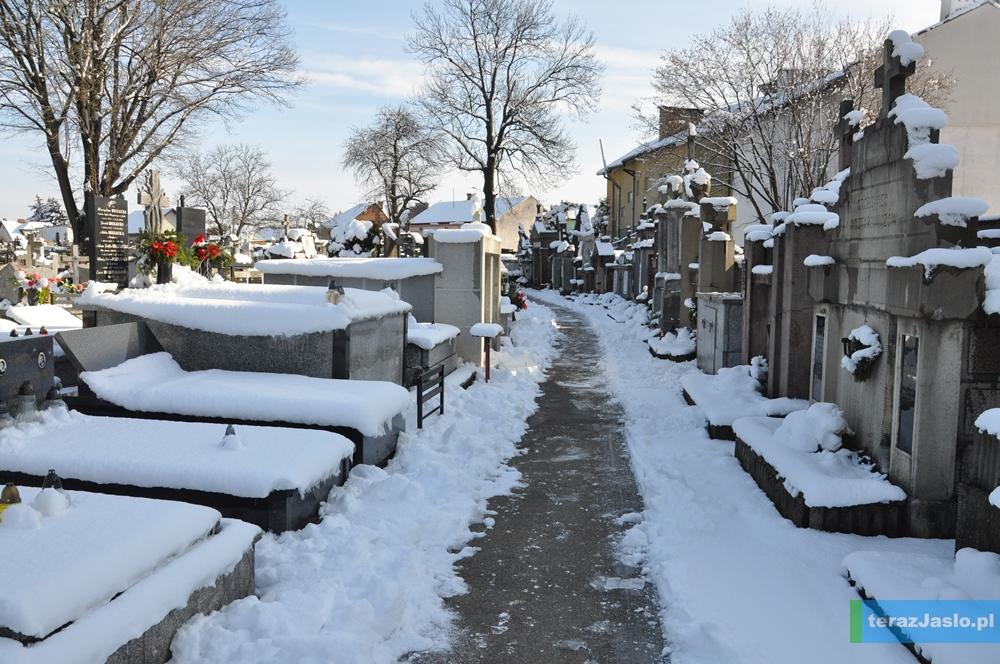cmentarz20150201-016