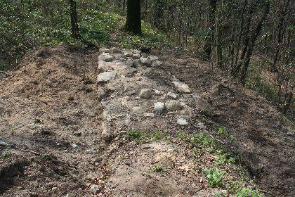 Fragment zdewastowanego fragmentu zamczyska Golesz (fot. Starostwo Powiatowe)