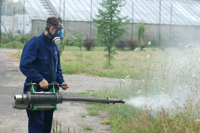Odkomarzanie za pomocą specjalnej dmuchawy do rozpylania środków owadobójczych. Fot. Damian Palar / terazJaslo.pl