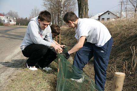 Uczniowie przy pracy. Fot. MPN / Katarzyna Gładysz