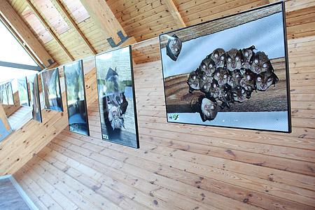 Fragment wystawy. Fot. Magurski PN / Agnieszka Nowak