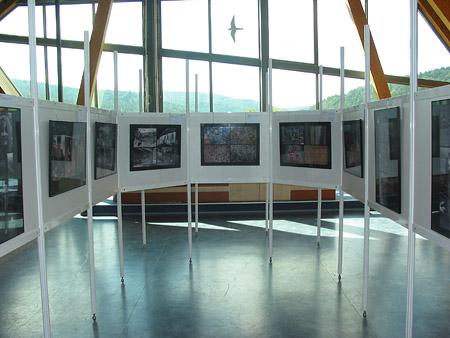 Fot. materiały Magurskiego Parku Narodowego