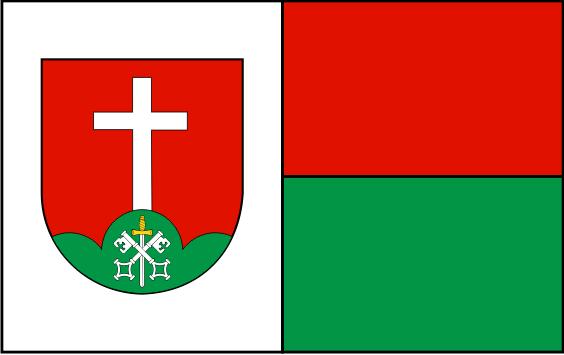 Projekt flagi gminy Brzyska